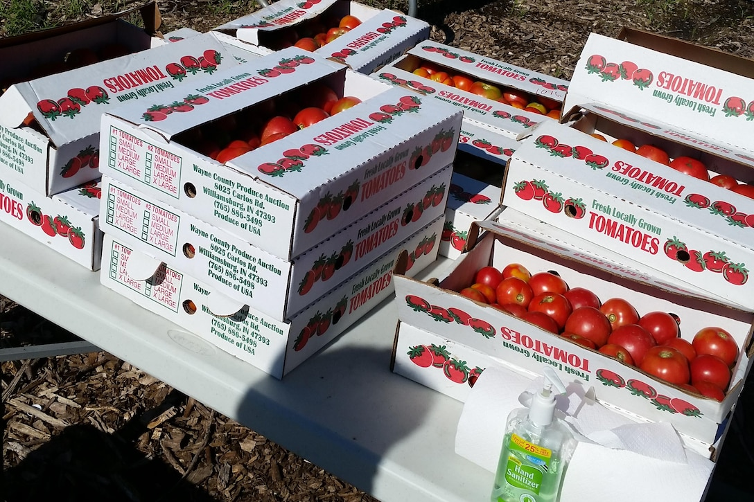 Boxes of tomatoes sit on a table.