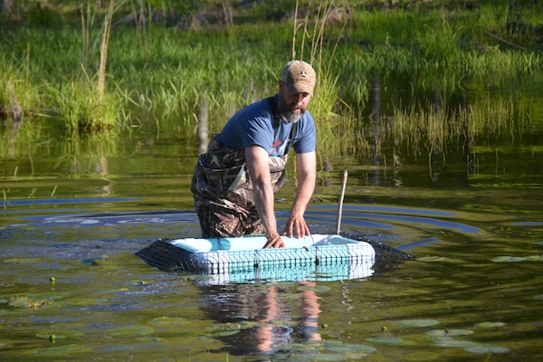 Chris Akios examines a basking trap to see if any spotted turtles have been captured.