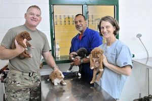 Lt. Col. Howard Gobble, left, the director of veterinary services for Public Health Command, Pacific, a Tongan veterinary technician and Maj. Kimberly Yore, an Army vet from Joint Base Lewis-McChord in Washington, pose with several puppies at the Tongan Ministry of Agriculture, Food, and Fisheries clinic in the Kingdom of Tonga, July 19, 2017.