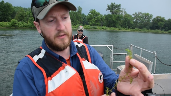 Biologist Michael Voohees inspects one of the plants pulled up from the bottom of Cayuga Lake near Aurora, NY on July 17, 2017. The purpose of the inspection was determine the amount of proliferation of the invasive Hydrilla plant; the plants were later treated with herbicides on July 20, 2017.