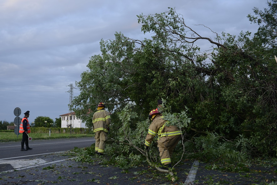 A Carabinieri military police officer and Aviano Air Base firefighters remove a tree from a highway Aug. 10, 2017, in Pordenone Province, Italy. The 31st CES firefighters teamed with local first responders to clear roadways after heavy thunderstorms passed through the area. (U.S. Air Force photo by Tech. Sgt. Andrew Satran)