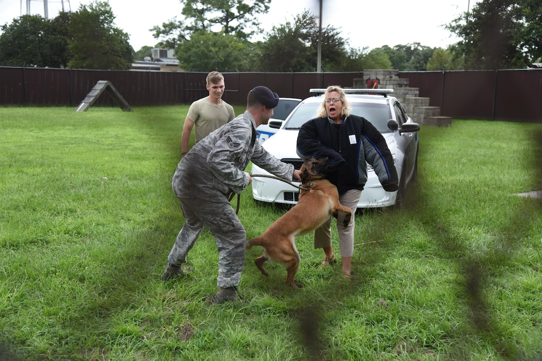 Linda Stewart, Imperial Palace Casino Resort Spa senior sales manager, participates in an 81st Security Forces Squadron military working dog demonstration during an honorary commanders 81st Mission Support Group orientation tour Aug. 10, 2017, on Keesler Air Force Base, Miss. The honorary commander program is a partnership between base leadership and local civic leaders to promote strong ties between military and civilian leaders. (U.S. Air Force photo by Kemberly Groue)
