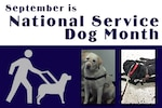 September is National Service Dog Month