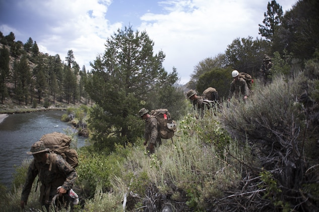 Marines with 2nd Battalion, 8th Marine Regiment, hike during Mountain Training Exercise 4-17 aboard Marine Corps Mountain Warfare Training Center, Bridgeport, Calif., August 2, 2017. Marines with 2/8, based out of Marine Corps Base Camp Lejeune, N.C., conducted the training in preparation for an upcoming deployment. (U.S. Marine Corps photo by Pfc. Margaret Gale)