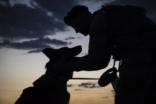 Senior Airman Ryne Wilson, 99th Security Forces Squadron military working dog handler, praises MWD Habo during a patrol at Nellis Air Force Base, Nevada, August 7, 2017. Praising their dog for exhibiting good behavior is an exceptional way to help build a bond between the handler and their dog. (U.S. Air Force photo by Airman 1st Class Andrew D. Sarver/Released)