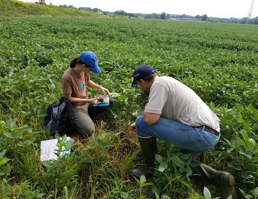 Katie Taylor from the District Office and Jeremy Kinney of the Dover Field Office of the Regulatory Division preforming a wetland delineation verification in northeastern Ohio.
