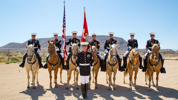 A day in the life of the Marine Corps' Mounted Color Guard
