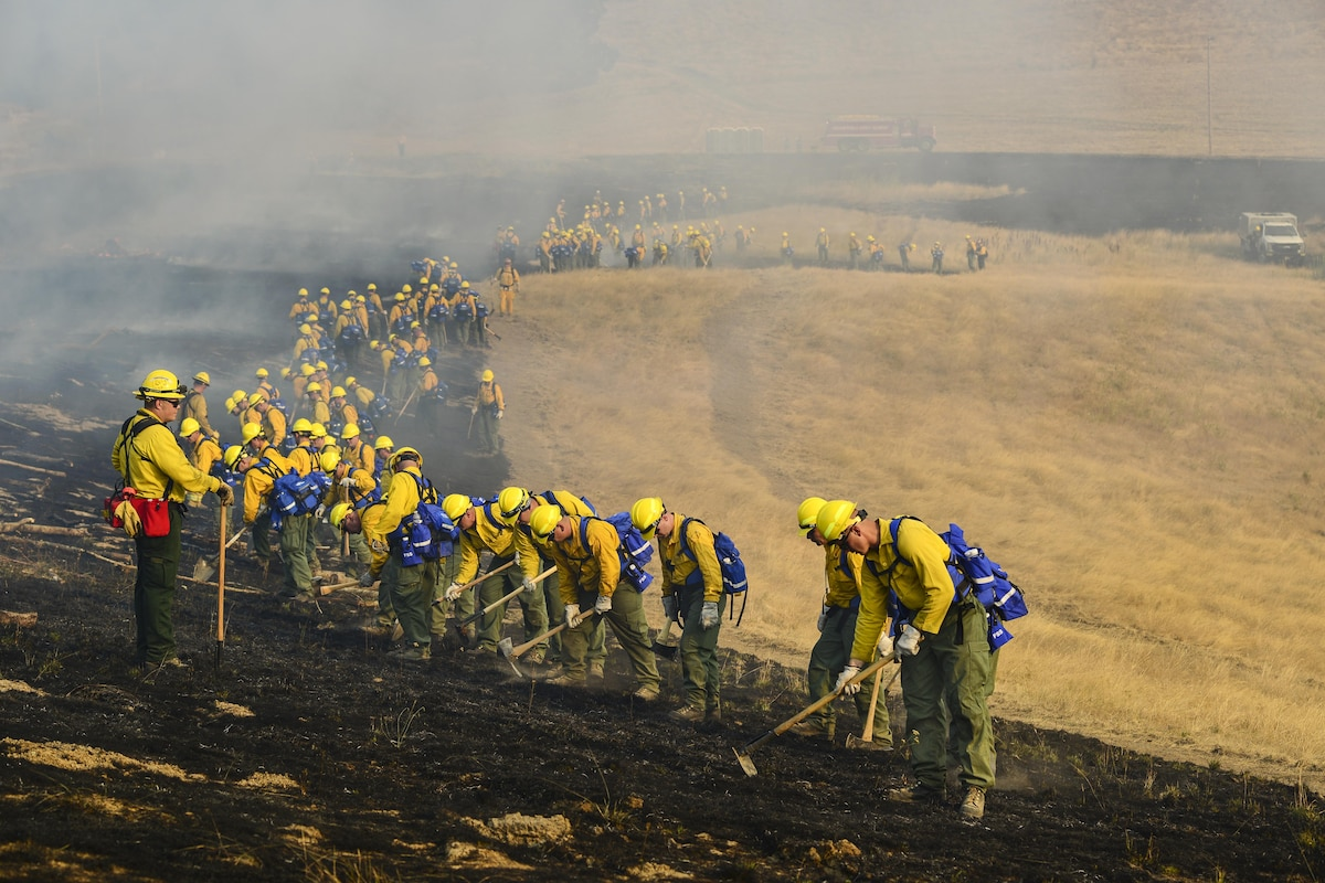 Dozens of guardsmen check for hot spots across a field.