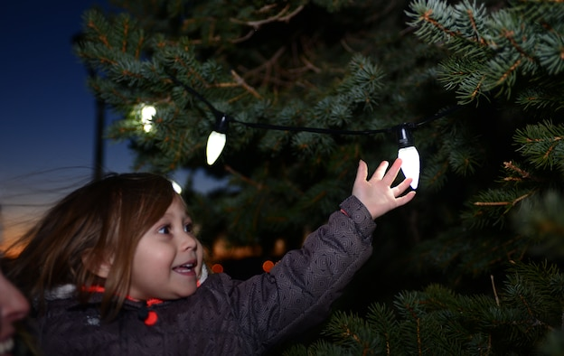 Alaina Lara, daughter of Senior Airman Ashley Sammelman, a metals technician assigned to the 28th Maintenance Squadron, reaches for one of the Christmas tree lights during the Base Holiday Tree Lighting Ceremony at Ellsworth Air Force Base, S.D., Dec. 1, 2017. This annual event provides Airmen and their families a chance to celebrate the holiday season with their community. (U.S. Air Force photo by Airman 1st Class Donald C. Knechtel)