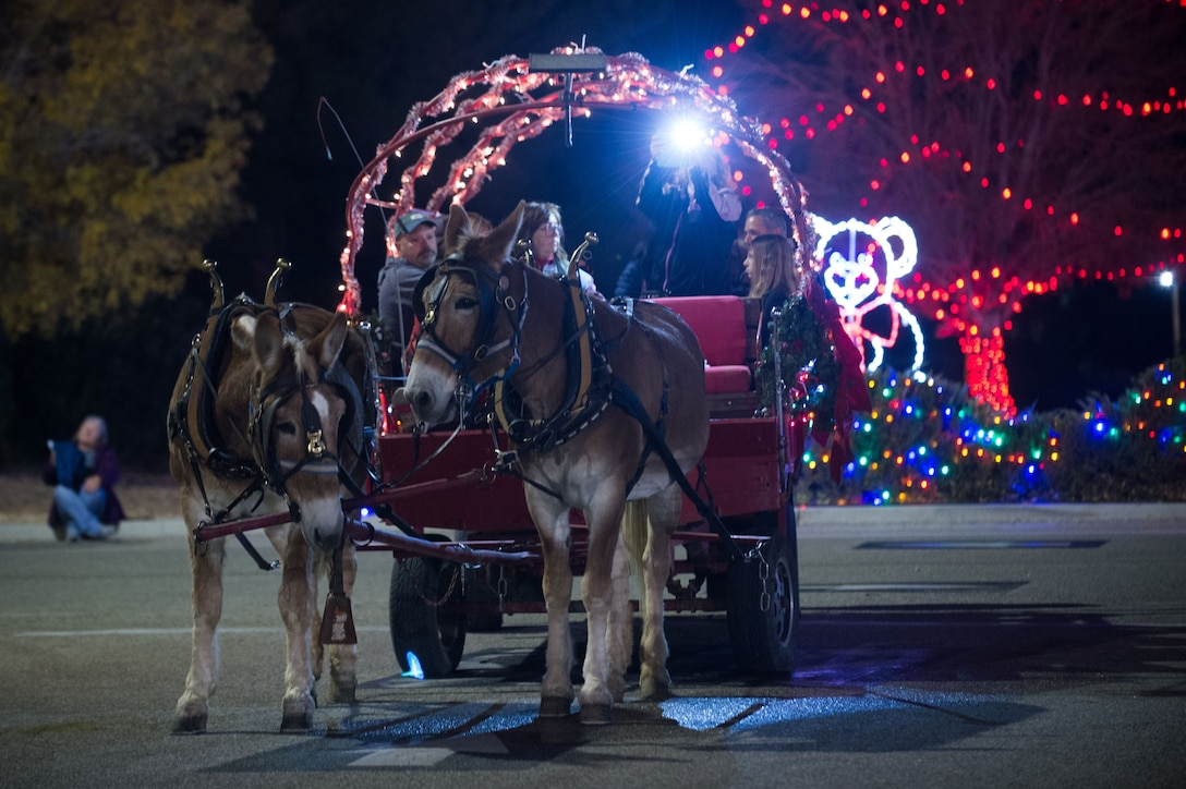 Carriage rides add to the holiday spirit during Winterfest. (U.S. Air Force photo by Jennifer Correa)