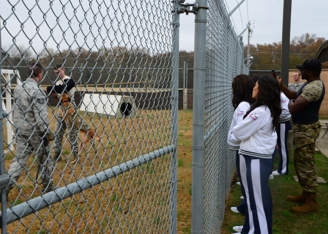 The Dallas Cowboys Cheerleading squad watches as Tech. Sgt. Karl Stenfanowicz, 14th Security Forces Squadron Kennel Master, commands Nnora, 14th SFS military working dog, to attack Staff Sgt. Zachary Kunkler, 14th SFS MWD handler, during a live demonstration Dec. 4, 2017, on Columbus Air Force Base, Mississippi. Ten members of the squad were selected to participate in a USO tour across U.S. Air Force bases throughout the winter holidays. (U.S. Air Force photo by Airman 1st Class Beaux Hebert)