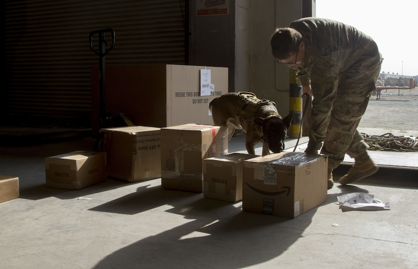 Soldier and military working dog inspecting packages.
