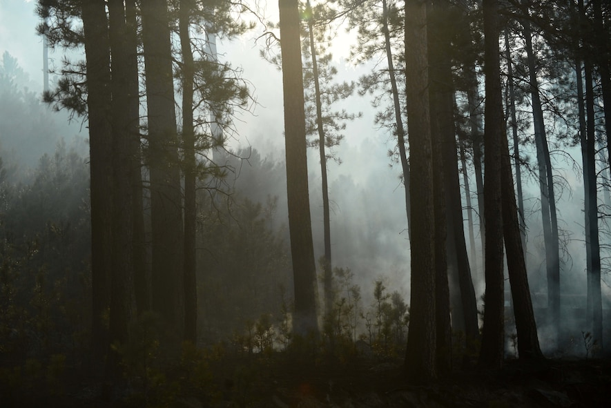 According to park officials, the fire grew from about six square miles on Tuesday to about 55 square miles on Wednesday and is 10 percent contained.