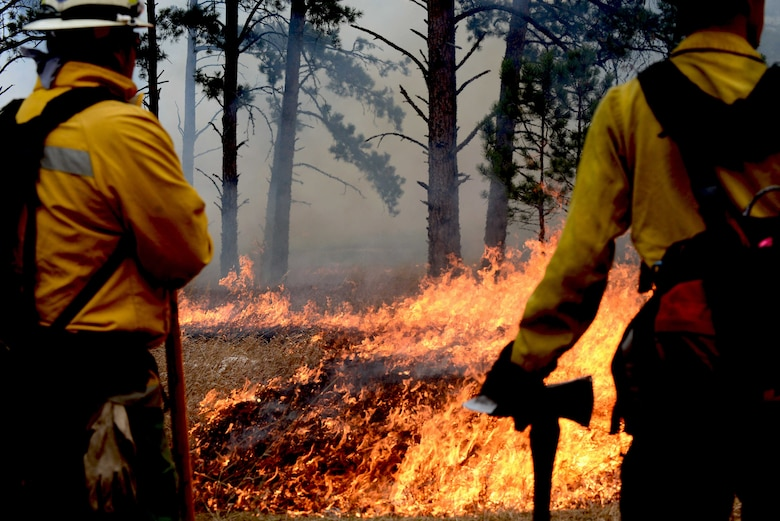 Ellsworth Airmen worked with more than 330 firefighters from four surrounding states to combat the wildfire covering 55 square miles of the park.