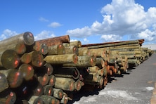 More than 3,000 pressure-treated utility poles, along with hundreds of concrete and steel poles, arrive at the lay-down yard in Ponce, Puerto Rico, part of the tons of critical electrical components flowing in daily from throughout the nation to rebuild the island's electrical distribution system. The U.S. Army Corps of Engineers' Task Force Power Restoration team continues to amass an inventory of critical power grid materials for onward delivery to the workforce.