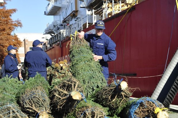 Image of Coast Guard Cutter Mackinaw crew offloading Christmas Trees in Chicage