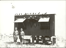 Scott Field Signal Corps personnel maintained a pigeon coop, which was used for communications as later decades would use the radio. Homing pigeons were commonly used in a war time environment due to their exceptional skill in being able to return back to their home coop. They would carry messages in a canister on their leg, sometimes accomplishing dozens of missions, while at risk of being shot out of the sky by enemy soldiers.