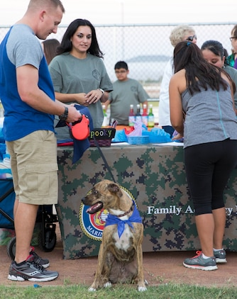 "Service members, their families and pets engage with personnel during the ""Purple Paws for a Cause"" event hosted by the Marine Corps Community Services Family Advocacy Program at Marine Corps Air Station Yuma, Ariz., Friday, October 21, 2016."