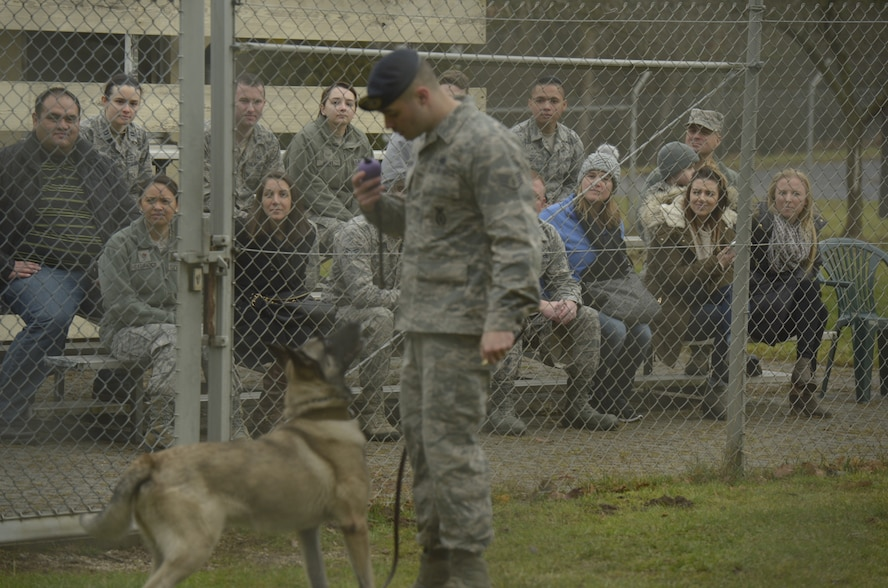 Annual award nominees watch a demonstration by Staff Sgt. Anthony Mason, 52nd Security Forces Squadron military working dog handler, on Spangdahlem Air Base, Germany, Feb. 2, 2017. The nominees were given a base tour which included the fire department, MWD and explosive ordnance disposal. (U.S. Air Force photo by Staff Sgt. Jonathan Snyder)