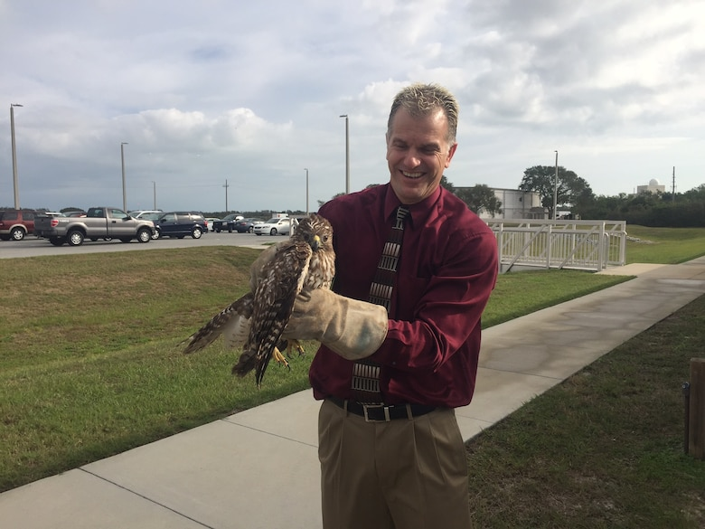 John Faulkner, 45th Civil Engineer Squadron deputy, helped with the release of the Juvenile red-shouldered hawk Jan. 26, 2017, at Cape Canaveral Air Force Station, Fla. The hawk was found near the Trident Basin Dec. 8, 2016, unable to fly and was then transported to the Florida Wildlife Hospital where they discovered he had two detached retinas.  The hawk was successfully rehabilitated and turned back over to the 45th Space Wing for release.  (Courtesy photo)