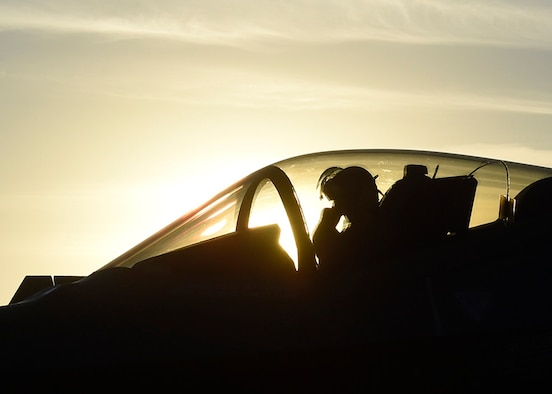 Maj. Will Andreotta, 61st Fighter Squadron heritage flight pilot, sits in the cockpit of an F-35 Lightning II during the Heritage Flight Training and Certification Course Feb. 10, 2017, at Davis-Monthan Air Force Base, Ariz. Heritage and demonstration teams need to be certified annually to participate in open houses and air shows worldwide. (U.S. Air Force photo by Senior Airman James Hensley)
