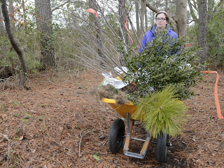 Alicia Garcia, 633rd Civil Engineer Squadron natural resources program manager, transfers pollinator plants from Bethel Park Garden to the nature trail during a volunteer event at Joint Base Langley-Eustis, Va., Jan. 6, 2017. Relocating the plants will allow better utilization by pollinator species, such as birds and butterflies. (U.S. Air Force photo by Airman 1st Class Kaylee Dubois)