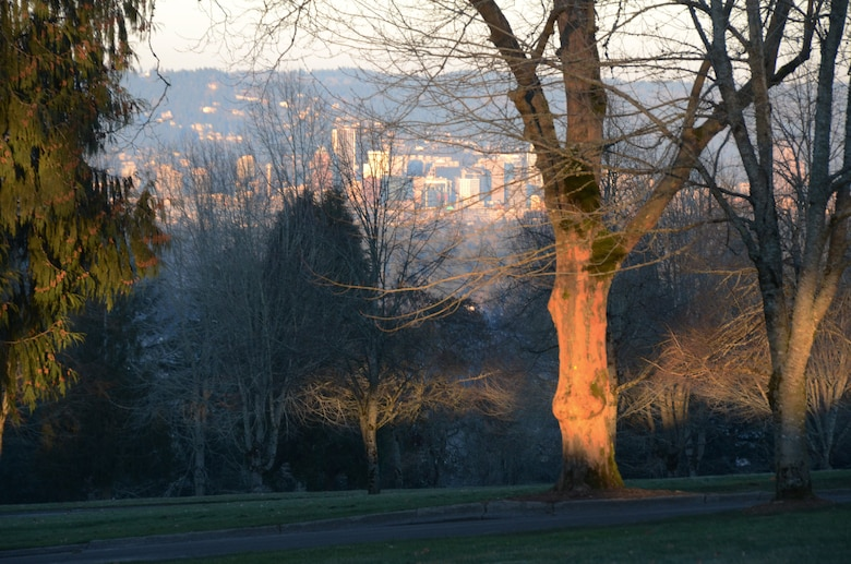 The city of Portland, Ore., in the distance, is illuminated through the tree line at Willamette National Cemetery, as the sun rises over the 307-acre burial grounds, about 10 miles southeast of the city center, Jan. 6, 2017. (U.S. Air National Guard photo by Tech. Sgt. John Hughel, 142nd Fighter Wing Public Affairs)