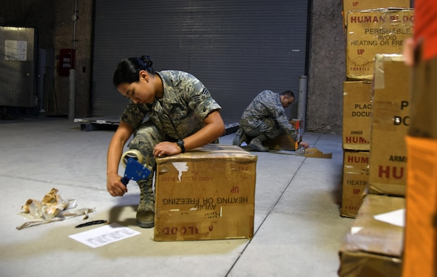 Blood Transshipment Airmen: The Veins Of The Aor > U.S. Air Forces