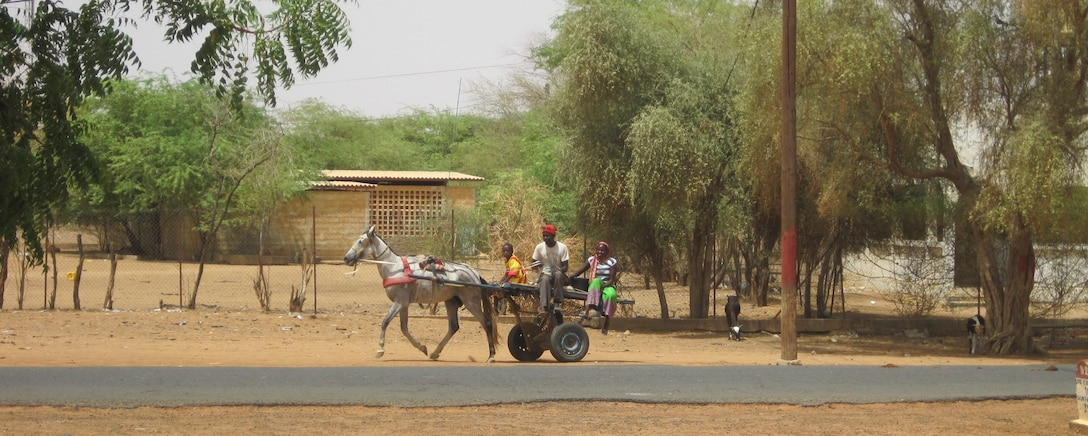 A man with a horse and trailer in the Sahel.