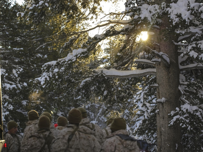 Marines with 2nd Battalion, 2nd Marine Regiment, gather around an instructor before a hike during Mountain Training Exercise 1-17 in the Marine Corps Mountain Warfare Training Center Bridgeport, Calif., training area Jan. 17, 2016. MCMWTC is one of the Marine Corps' most secluded posts, comprised of approximately 46,000 acres of terrain with elevations ranging from 5,000 to 11,000 feet. The exercise trains elements of the Marine air-ground task force across the warfighting functions for operations in mountainous, high-altitude and cold-weather environments in order to enhance a unit's ability to shoot, move, communicate, sustain and survive in the most rugged regions of the world. (U.S. Marine Corps photo by Cpl. Levi Schultz)