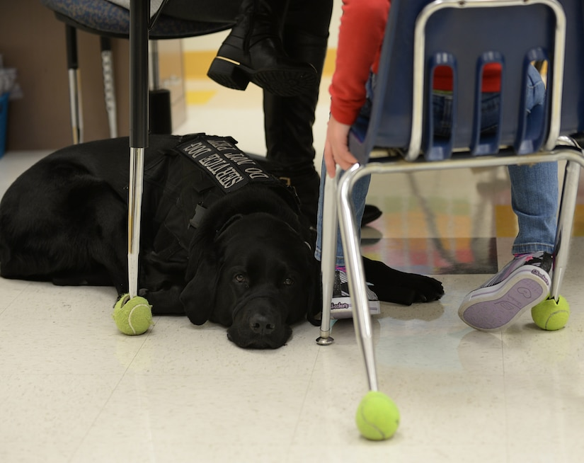 Hope, a service dog, lies at the feet of AudreeAna Johns, age six, daughter of U.S. Army Sgt. Matthew Johns, 221st Military Police Detachment military police officer, at Gen. Stanford Elementary School at Joint Base Langley-Eustis, Va., Jan. 24, 2017. Hope is a trained seizure alert, stability and anxiety service dog who goes to school with AudreeAna, accompanies her on doctors' visits and sleeps near her, alerting those nearby of issues. (U.S. Air Force photo by Staff Sgt. Teresa J. Cleveland)