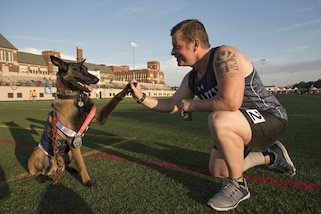 Navy veteran Ron Condrey gets a high-five from Via, his military service dog, after winning the silver medal in a track event during the 2017 Department of Defense Warrior Games in Chicago, July 2, 2017. DoD photo by Roger L. Wollenberg