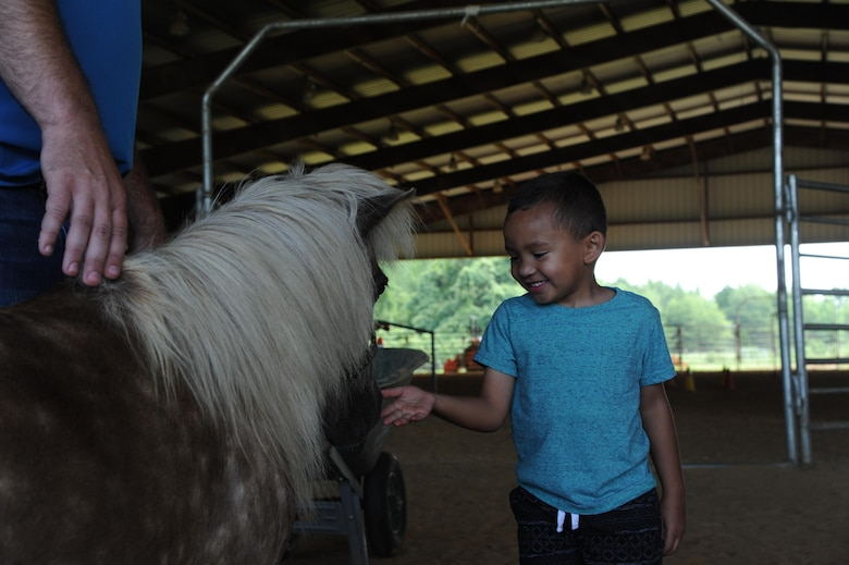 Avery, son of Lt. Col. Erin Knightner, 14th Medical Group Chief Nurse, pets a miniature pony June 30, 2017, at the Elizabeth A. Howard 4-H Arena in West Point, Mississippi. The horses at the arena are very calm and are gentle enough for small children to pet, brush and ride them. (U.S. Air Force photo by Airman 1st Class Beaux Hebert)