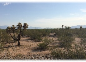 General overview of site conditions at the former Sahuarita Air Force Range.