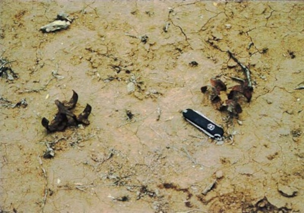 20mm projectile links encountered on the surface at Range Complex No. 2 MRS.