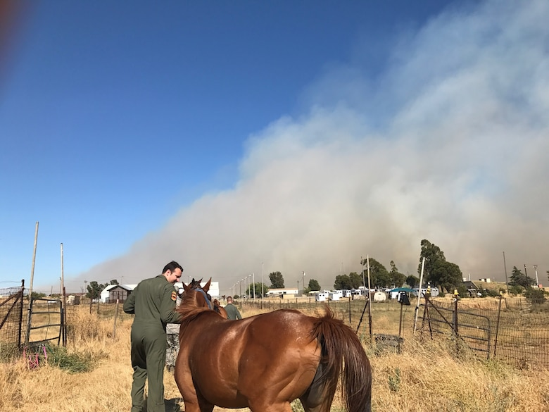 Capt. Evan Rodts, 21st Airlift Squadron, evacuates a horse July 6 from a turnout at the Travis Equestrian Center during a grass fire at Travis Air Force Base, Calif. (Courtesy photo)