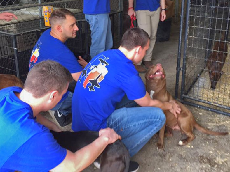 """Volunteers from Laughlin Air Force Base, Tx., play with animals during an event at A Pet's Wish animal shelter in Del Rio, Tx., April 1, 2017.  The volunteering hours and """"Christmas in July"""" event are some of the many ways Laughlin's Airmen give back to the local community."""