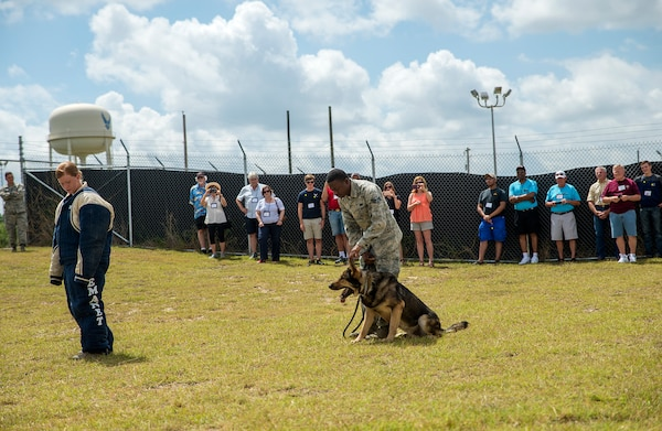 Senior Airmen Sarah Banks and Travis Waddy, 802nd Security Forces Squadron K-9 handler, perform a controlled agression demonstration for members of the National Corvette Restorers Society July 13, 2017 at Joint Base San Antonio-Lackland, Texas. The visit also included tours of a C-5M Super Galaxy aircraft and United States Air Force Airman Heritage Museum and Enlisted Character Development Center. (U.S. Air Force photo by Benjamin Faske)