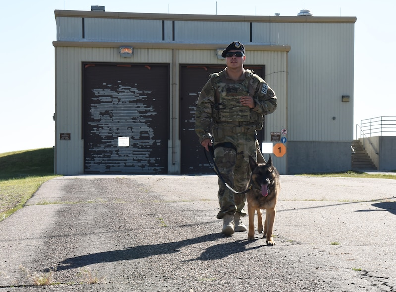 Staff Sgt. Richard Garcia, 90th Security Forces Squadron dog handler, walks back with his K-9 after doing a security check in a building at F.E. Warren Air Force Base, Wyo., July 14, 2017. Defenders from the 90th SFS are alerted by the Base Defense Operations Center when any alarms go off on base. (U.S. Air Force photo by Airman 1st Class Breanna Carter)