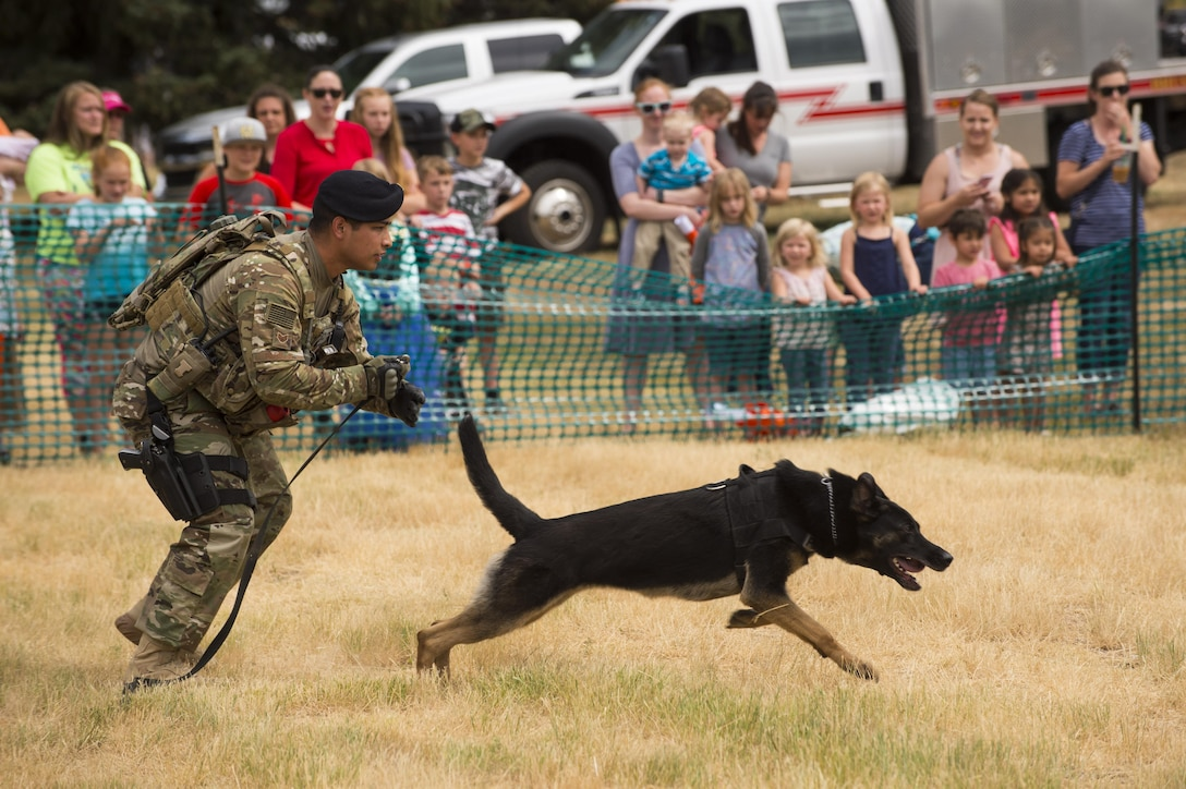 Adults and children look on as Staff Sgt. Desi Padilla, 90th Security Forces Squadron military working dog handler, releases Eby to catch a aggressor for a MWD demonstration during Fort D.A. Russell Days at F.E. Warren Air Force Base, Wyo., July 21, 2017. Dog handlers attend a 55 day training in order to be certified to work with the dogs on base. This year marks the 150th anniversary of F.E. Warren Air Force Base, and the annual base open house brings military and civilian communities together to learn more about the base's rich history. (U.S. Air Force photo by Staff Sgt. Christopher Ruano)