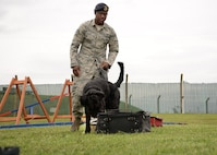 U.S. Air Force Staff Sgt. Dominick Young, 100th Security Forces Squadron Military Working Dog handler, and MWD Brock, a Giant Schnauzer, perform odor detection training July 11, 2017, on RAF Mildenhall, England. Brock is the only Giant Schnauzer military working dog in the Department of Defense. This breed of dog was used in World War II, then not again until the early 1980s. He is the first one to be brought into the DOD since that time. (U.S. Air Force photo by Karen Abeyasekere)