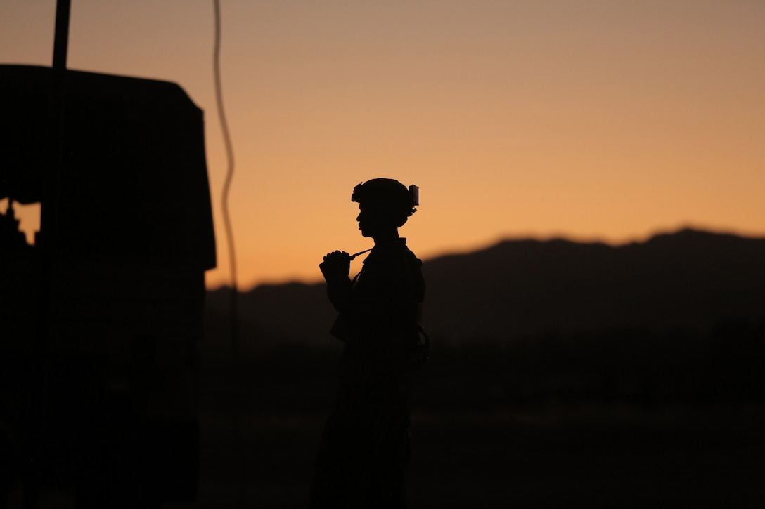 Staff Sgt. Shawn Allen, of the Army Reserve's 946th Transportation Company, watches the sunset during Combat Support Training Exercise 91-17-03, July 18, 2017, Fort Hunter Liggett, Calif. Approximately 5,000 Army Reserve and National Guard forces participated in the exercise. First Army provided about 65 observer coach/trainers to augment their Army Reserve partners at the 91st Training Division and assist in training the most capable, combat-ready and lethal federal reserve force in the history of the nation.  (U.S. Army photo by Master Sgt. Anthony L. Taylor)
