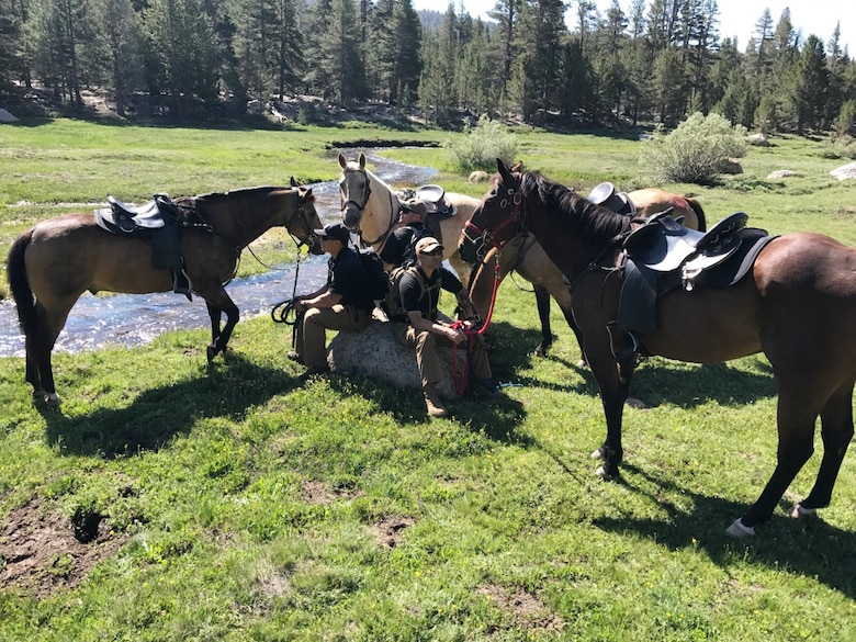 Members of the Vandenberg Mounted Horse Patrol and their respective Military Working Horses take a break during a recovery mission, June 29, 2017, Lone Pine, Calif. The Vandenberg Mounted Horse Patrol was requested nearly a week after a RQ-4 Global Hawk unmanned surveillance aircraft assigned to the 9th Reconnaissance Wing at Beale Air Force Base crashed during a trip back to its home station, June 21. (courtesy photo)