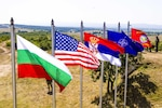 Flags at a training area in Koren, Bulgaria, reflect the nations and organizations participating in exercise Peace Sentinel, a combined-arms live-fire exercise between the Bulgarian Land Forces' 4th Infantry Division and the U.S. Army's 10th Combat Aviation Brigade, July 19, 2017. Peace Sentinel is a Bulgarian national exercise taking place as part of Saber Guardian 17. Army photo by Spc. Thomas Scaggs
