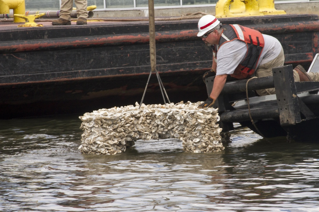 NORFOLK, Va. -- Erik Sherer, a deckhand with the Norfolk District, helps guide an oyster cross into place at the district's headquarters near downtown Norfolk, on July 26, 2017. Three crosses were placed in the Elizabeth River and will serve as new habitat for oysters. (U.S. Army photo/Patrick Bloodgood)