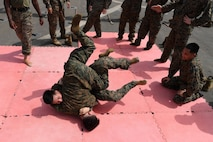 U.S. 5TH FLEET AREA OF OPERATIONS (July 20, 2017) Marines assigned to the 24th Marine Expeditionary Unit practice combat techniques during Marine Corps Martial Arts Program training on the flight deck aboard the amphibious dock landing ship USS Carter Hall (LSD 50). Carter Hall, part of the Bataan Amphibious Ready Group, is deployed to the U.S. 5th Fleet area of operations in support of maritime security operations to reassure allies and partners, and preserve the freedom of navigation and the free flow of commerce in the region. (U.S. Navy photo by Mass Communication Specialist 1st Class Darren M. Moore)