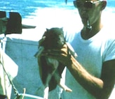 USCG Mascots: A pig on a cutter?  Yes, that's Samantha, and she saw combat service on board the USCGC  Point Glover  in Vietnam.