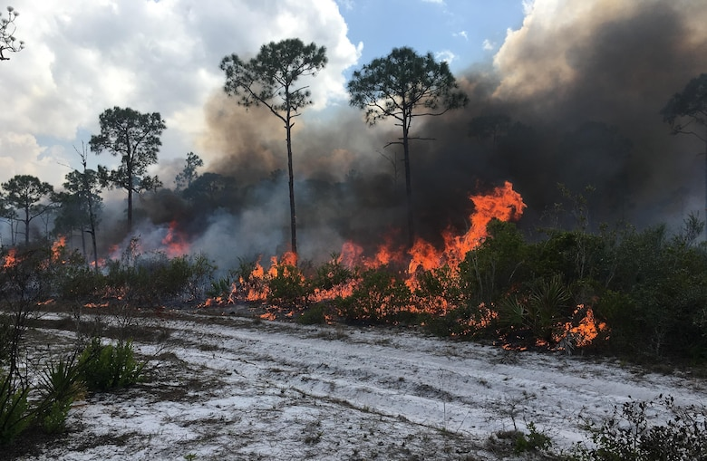 An Air Force Wildland Fire Center team, supported by teams from the Florida Forest Service and the U.S. Fish and Wildlife Service, is working to contain four wildfires on the Avon Park Air Force Range in Florida. The Avon Park Wildland Support Module's prescribed fire activities at strategic locations have significantly influenced the outcome of the wildfires by mitigating wildfire damage. (U.S. Air Force photo)