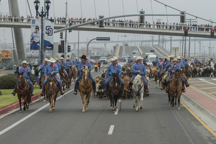 U.S. Marine Corps Brig. Gen. Kevin J. Killea, Marine Corps Installations West, Marine Corps Base, Camp Pendleton, and members of the San Diego County fair participate in a cattle drive at the Gas Lamp District in San Diego, Calif., June 3, 2017. The San Diego County Fair hosted the drive as a part of the gas lamp district's 150th anniversary and to promote the county fair that opened June 2. (U.S. Marine Corps photo by Lance Cpl. Brooke Woods)
