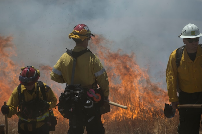 Over 200 firefighters with the U.S. Forest Service, Orange County Fire Authority, Cal Fire, and local San Diego County agencies gathered on Camp Pendleton, Calif. to participate in wildfire firefighting methods training, June 5, 2017. This training is conducted to further enhance their abilities to effectively and efficiently combat wildfires. Significant wildland fires throughout San Diego County in October of 2007 lead officials to seek a partnership between military and civilian aviation and firefighting assets to better manage crisis aboard regional military installations and in the surrounding communities. Since then, Camp Pendleton security and safety agencies, and local departments have been working together to streamline response and integrated communication efforts to provide ready, trained and certified military and civilian resources to combat wildland fires in the region, culminating with a cooperative effort to extinguish wildland fires.(U.S. Marine Corps photo by Lance Cpl. Michael LaFontaine)